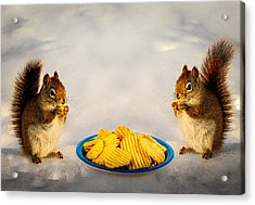 When You Lose Your Nuts There Is Always Chips Acrylic Print by Bob Orsillo