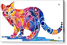 Whimzical Calico Kitty Acrylic Print by Jo Lynch