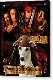 Whippet Art - Pirates Of The Caribbean The Curse Of The Black Pearl Movie Poster Acrylic Print by Sandra Sij