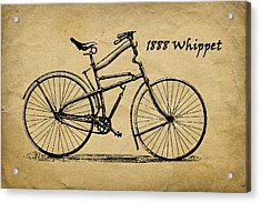 Whippet Bicycle Acrylic Print by Tom Mc Nemar