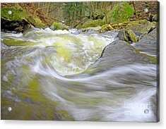 Whirlpool In Forest Acrylic Print by Charline Xia