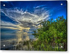 Whisper Wind Acrylic Print by Marvin Spates