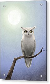 White Owl Acrylic Print by April Moen