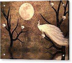 White Peacock Acrylic Print by Sharon Lisa Clarke