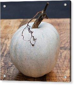 White Pumpkin Acrylic Print by Indigo Schneider