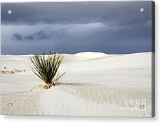 White Sands Dark Sky Acrylic Print by Bob Christopher