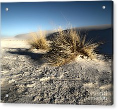 White Sands New Mexico Among The Dunes Acrylic Print by Gregory Dyer