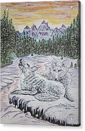 White Wolves Acrylic Print by Kathy Marrs Chandler
