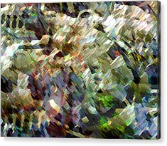 Whocome5dd Acrylic Print by Immo Jalass