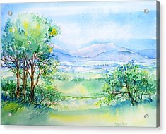 Wicklow Landscape In Summer Acrylic Print by Trudi Doyle