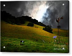 Wilbur The Pig Goes Home - 5d21059 Acrylic Print by Wingsdomain Art and Photography