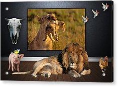 Wild Dreams Acrylic Print by Marvin Blaine