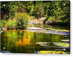 Wild Flowers On Blue River Acrylic Print by Tamyra Ayles