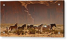 Wild Horses In The Desert Acrylic Print by Susan  Schmitz