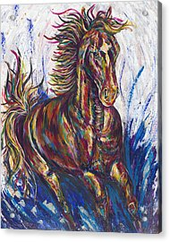 Wild Mustang Acrylic Print by Lovejoy Creations