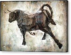Wild Raging Bull Acrylic Print by Daniel Hagerman