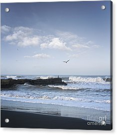 Wild Seascape With Old Jetty And Seagulls Overhead  Acrylic Print by Colin and Linda McKie