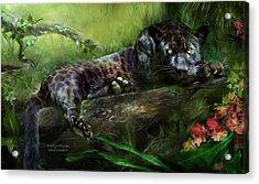 Wildeyes - Panther Acrylic Print by Carol Cavalaris