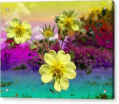 Wildflower Abstract Acrylic Print by Mike Breau