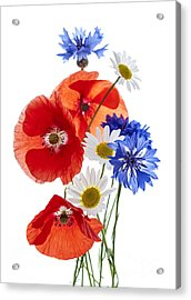 Wildflower Arrangement Acrylic Print by Elena Elisseeva