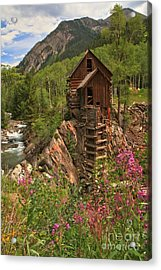 Wildflowers Along The Crystal Acrylic Print by Adam Jewell