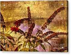 Wildflowers At The Pond Acrylic Print by Elaine Manley