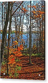 Willow Lake Acrylic Print by Bill Morgenstern