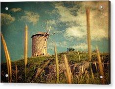 Windmill 14 48 Acrylic Print by Taylan Soyturk