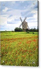Windmill And Poppy Field In Brittany Acrylic Print by Elena Elisseeva