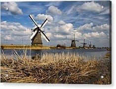 Windmills In Kinderdijk Acrylic Print by Oleksandr Maistrenko