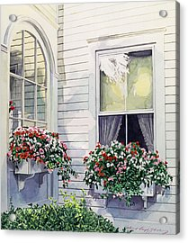 Window Boxes Acrylic Print by David Lloyd Glover