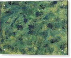 Windswept Fields Acrylic Print by Harmeet Singh