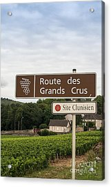 Wine Route Sign In France Acrylic Print by Patricia Hofmeester