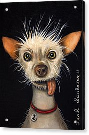 Winner Of The Ugly Dog Contest 2011 Acrylic Print by Leah Saulnier The Painting Maniac