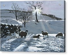 Winter Afternoon At Dentdale Acrylic Print by John Cooke