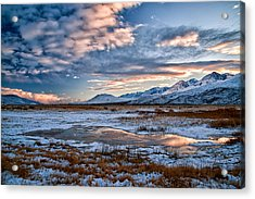 Winter Afternoon Acrylic Print by Cat Connor