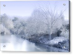 Winter Blue And White Acrylic Print by Julie Palencia