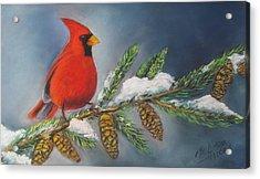 Winter Cardinal 2 Acrylic Print by Melinda Saminski