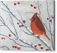 Winter Cardinal Acrylic Print by Peter Miles