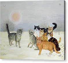 Winter Cats Acrylic Print by Ditz