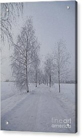 Winter Day Acrylic Print by Veikko Suikkanen