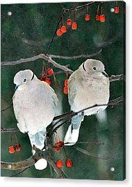 Winter Doves Acrylic Print by Betty LaRue