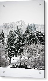 Winter Dream Acrylic Print by Allan Millora