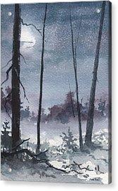 Winter Dreams Acrylic Print by Sean Seal