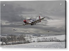 Winter Freedom Acrylic Print by Pat Speirs