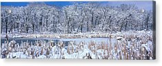 Winter, Illinois, Usa Acrylic Print by Panoramic Images
