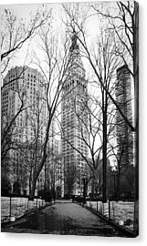 Winter In Madison Square Park - New York City Acrylic Print by Erin Cadigan