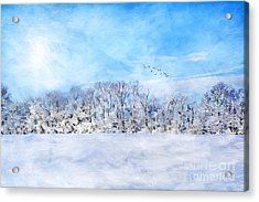 Winter Landscape Acrylic Print by Darren Fisher