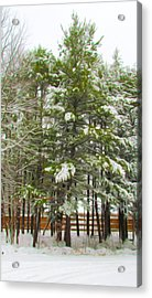 Winter Landscapes Acrylic Print by Lanjee Chee