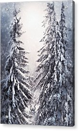 Winter Light And Tiger Acrylic Print by Svetlana Sewell